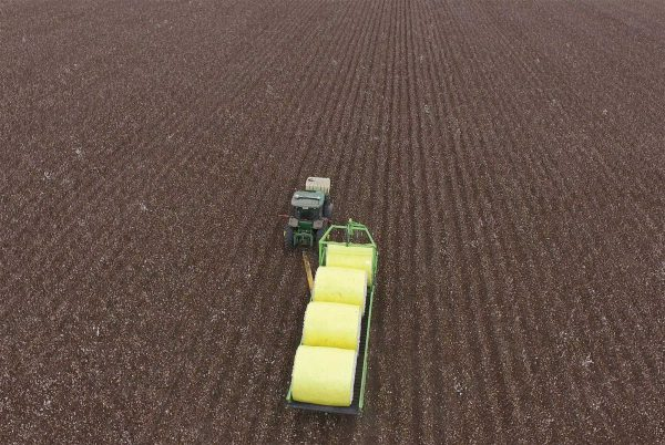 Overhead view of Bale Runner fully loaded with Cotton Bales transporting