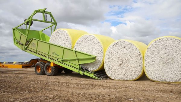 Bale Runner unloading Cotton Bales